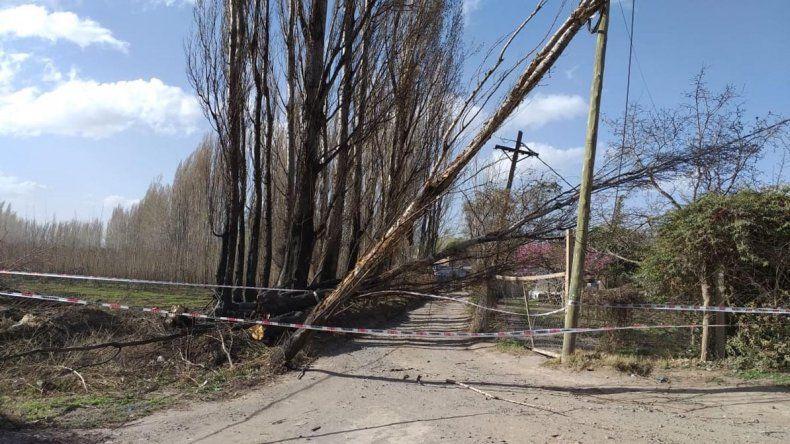 El viento voló techos en Añelo y dañó una casa en Vista Alegre