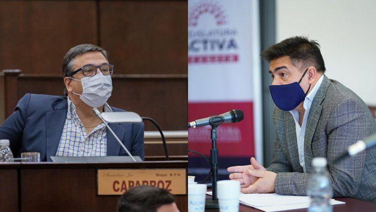 Dos diputados atenderán en hospitales en medio de la pandemia