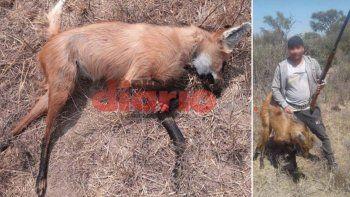 van presos por cazar una aguara guazu y compartir las fotos