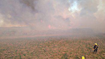 El Chañar: se quemaron 50 hectáreas en un incendio de pastizales