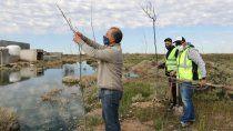 la muni reutiliza aguas residuales para crear un bosque