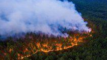 nuevo mal en el artico: raros incendios zombies
