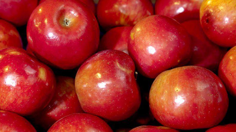 Brasil prohibió el ingreso de fruta del Alto Valle por Carpocapsa