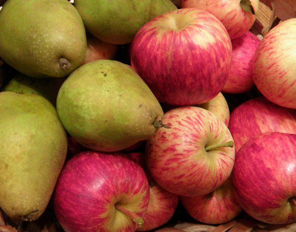 Brasil levantó el bloqueo de peras y manzanas provenientes del Alto Valle
