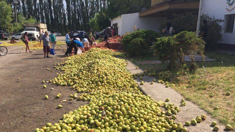 Los productores volvieron a tirar peras y manzanas en Allen