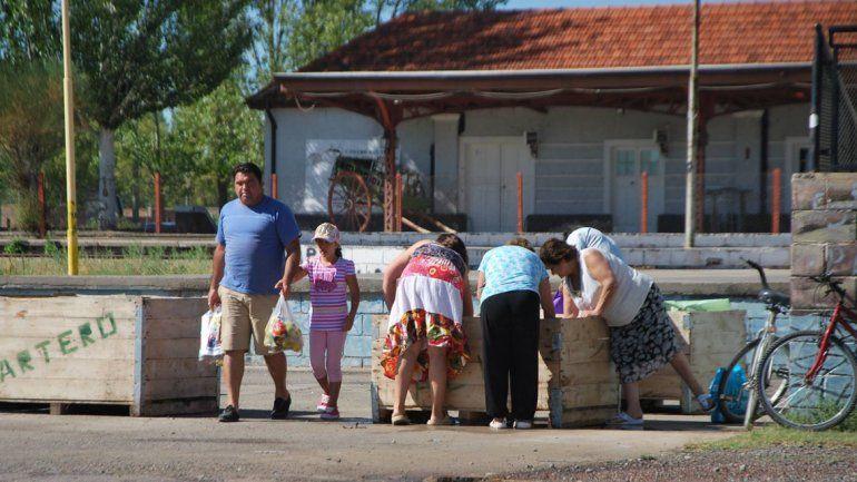 Los chacareros regalan miles de kilos de peras en Cipolletti y Fernández Oro