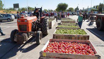 peras y manzanas: extienden por un ano la emergencia fruticola