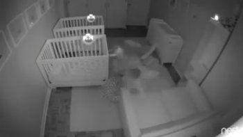 Bebés organizaron una fiesta mientras sus padres dormían