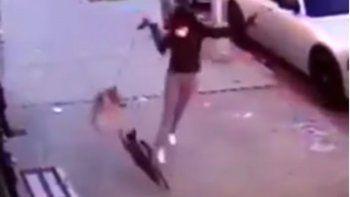 Una mujer y su perro reciben un brutal ataque de un gato