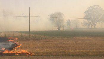 Voraz incendio consumió el predio de la Facultad de Ciencias Agrarias