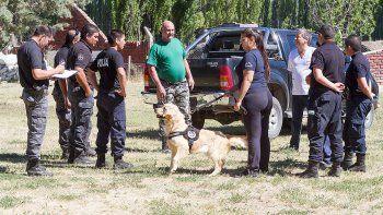 Perros cipoleños se suman a la búsqueda del femicida Muñoz