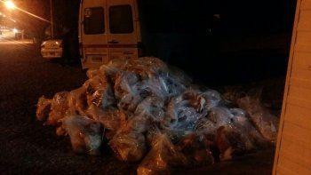 Decomisaron más de una tonelada de carne ilegal