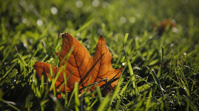 ¿Por qué el otoño comienza hoy y no el 21 de marzo?