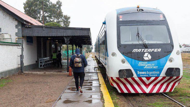 Tras la caída de un árbol, se reanudó el servicio del Tren del Valle
