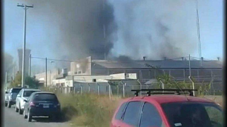 Un incendió destruyó un galpón de empaque en Allen