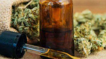 unrn apoya el uso medicinal del cannabis