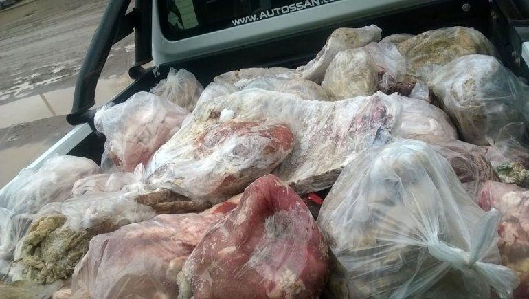 Secuestraron miles de kilos de carne en mal estado en la costa rionegrina