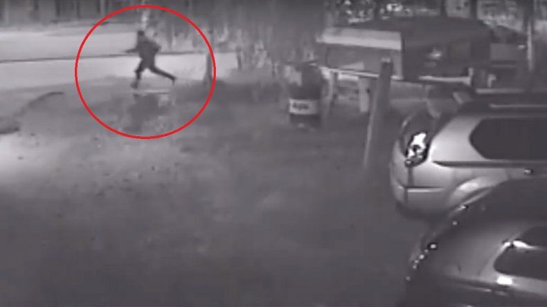 Temor en Cipo: un joven armado corre a los perros para mutilarlos