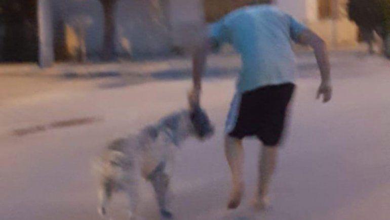 Perro atacó brutalmente a una joven de 16 años y su mascota