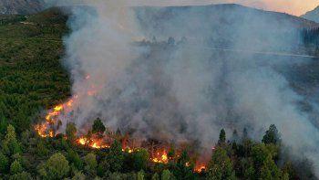 Creen que el incendio en los bosques del Bolsón fue intencional