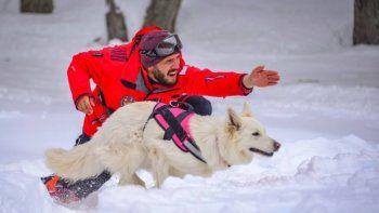 entrenaron perros socorristas en el cerro chapelco