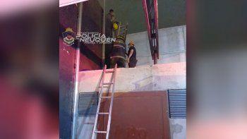 Intentó fugarse por los techos, se asustó y tuvo que ser rescatado