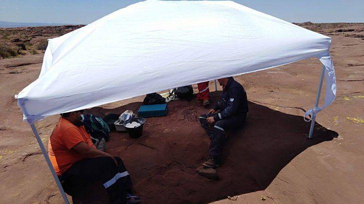 Encuentran restos de un dinosaurio en un área de Vaca Muerta