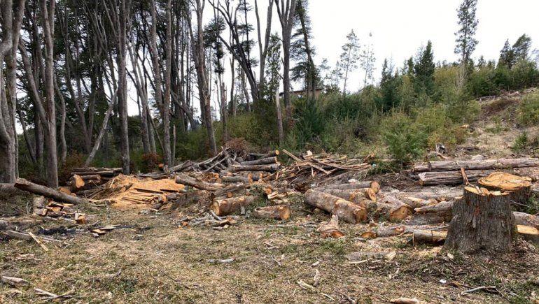 Vecinos intentan frenar un proyecto inmobiliario por daños ambientales