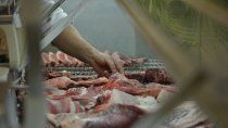 como identificar las bandejas de la carne de oferta