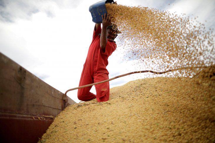 FOTO DE ARCHIVO: Un trabajador inspecciona granos de soja durante la cosecha cerca de la ciudad de Campos Lindos