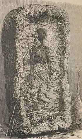 La ilustración de aquella momia.