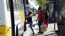 el transporte sera gratuito el domingo: ¿como funcionara en neuquen?
