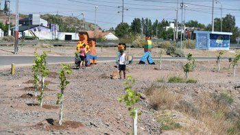senderos mas verdes: la muni sumo 350 arboles en parque norte