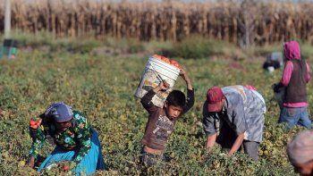 El trabajo infantil es una forma moderna de esclavitud