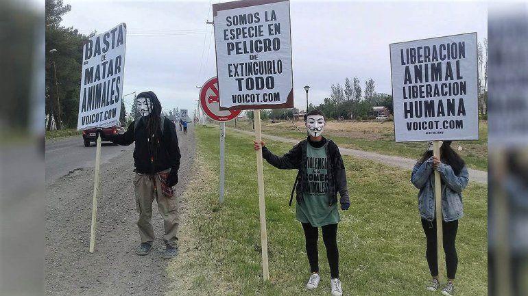 Una protesta de activistas veganos sorprendió a todos en la Ruta Chica