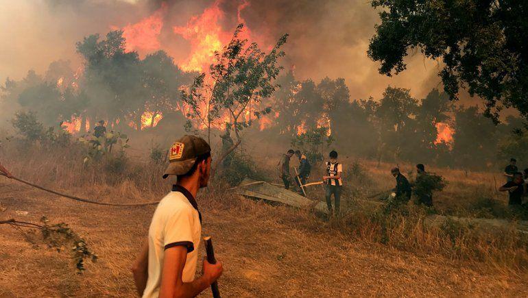Incendios en Argelia: hay más de 90 víctimas