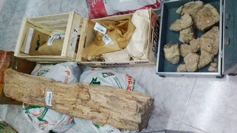 Ofrecían piezas fósiles y arqueológicas por una plataforma de ventas