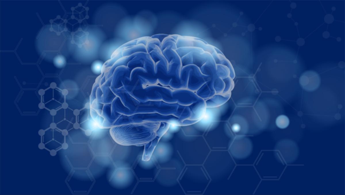 neuquen, sede del v congreso del colegio argentino de neurointervencionistas