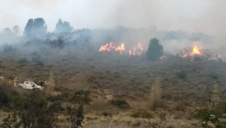 Aluminé: bomberos combatieron por horas un incendio de pastizales