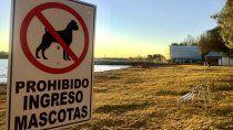 El lugar de la discusión por los perros en la playa de Mari Menuco.