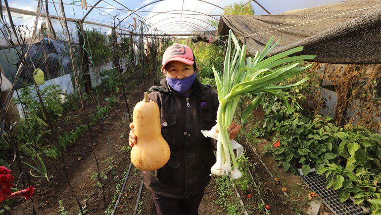Puesto Chañar: la usina de emprendedores agroalimentarios de la región