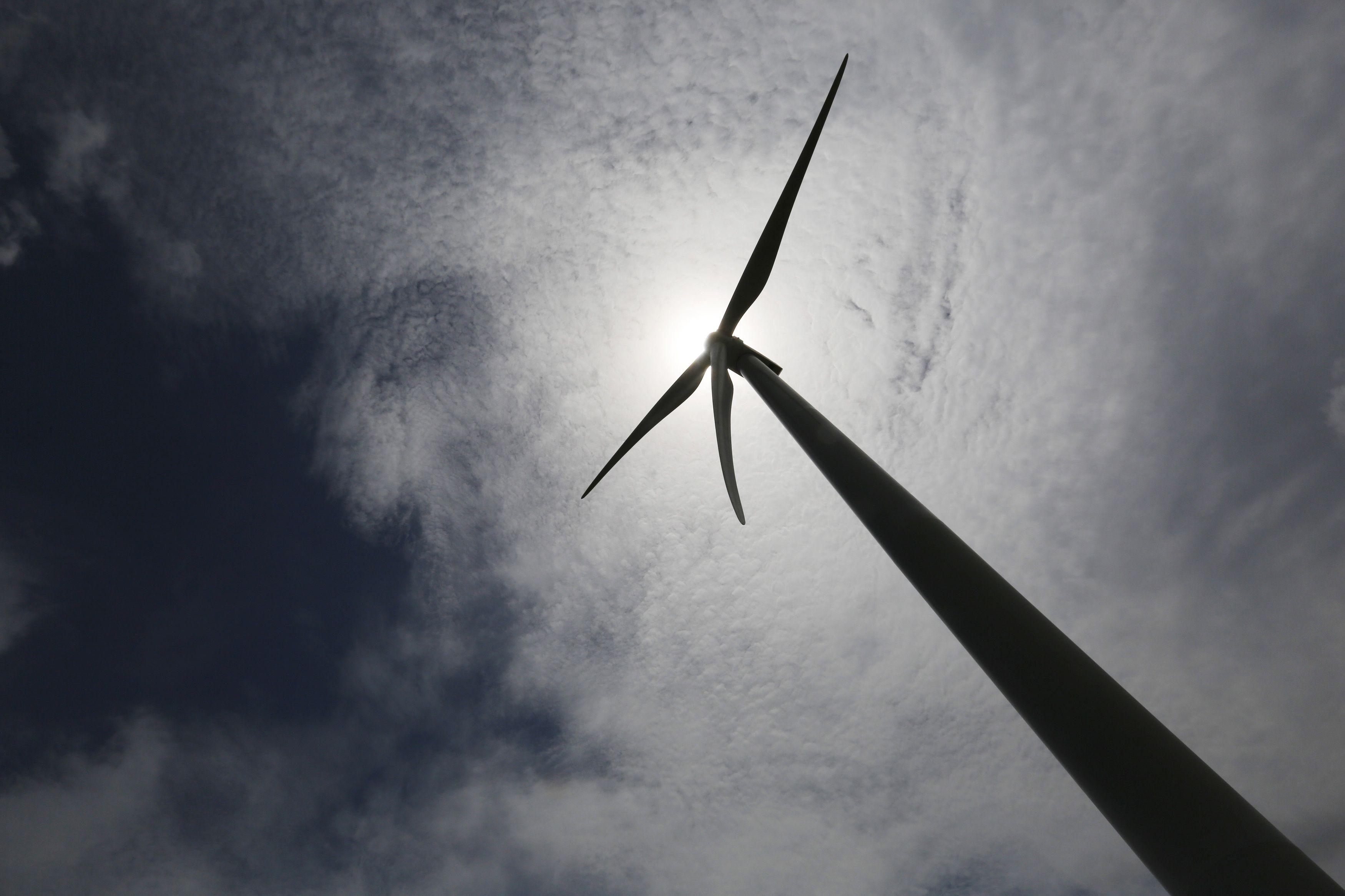 La eólica es la principal fuente de energía renovable del país.