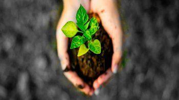 Día Mundial del Suelo 2020 aboga por la biodiversidad