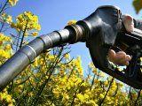 Nación prorrogó la Ley de Biocombustibles