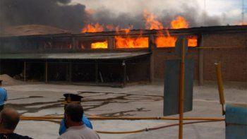 Más de 200 personas combaten el incendio en un galpón de empaque