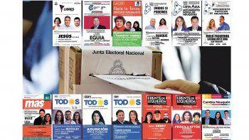Trece listas en Neuquén van por un lugar en las elecciones generales