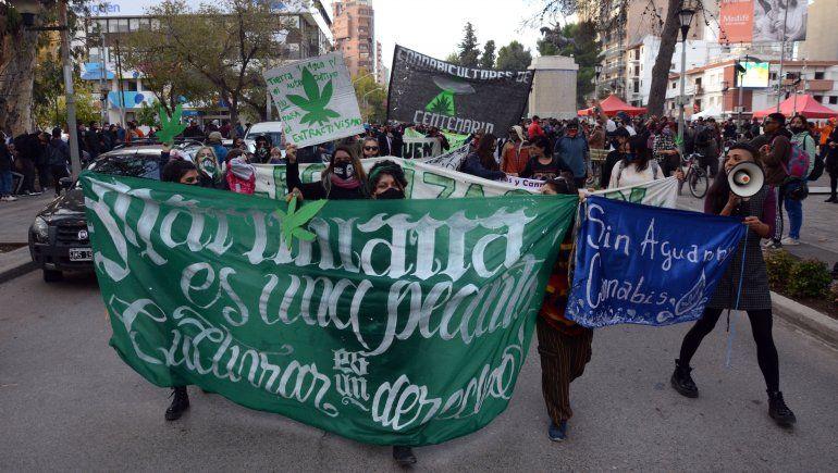 Marcha por la legalización de la marihuana al grito de cultivar es un derecho