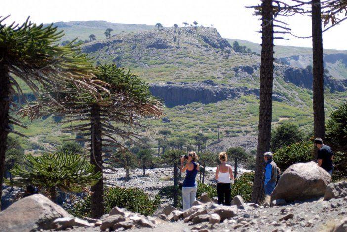 El ministerio de Turismo difundió un catálogo con paquetes previaje para los destinos de Neuquén.