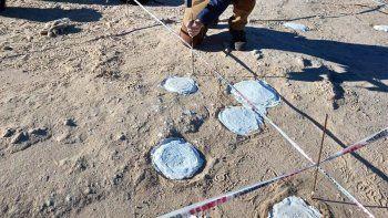 La Unco hace historia con el hallazgo de 200 huevos fósiles