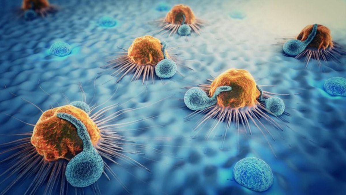 cancer: nuevo tratamiento logro eliminar los tumores